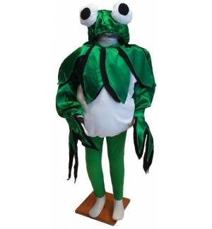 Carnival Halloween Costume kids frog 5-6 years Old MARK690